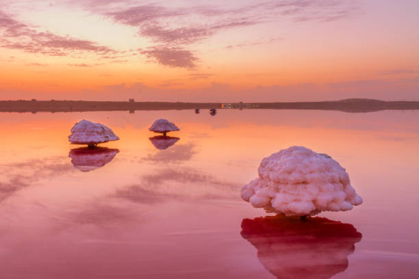 Pink Lake in the Masazir. Baku, Azerbaijan. stock photo