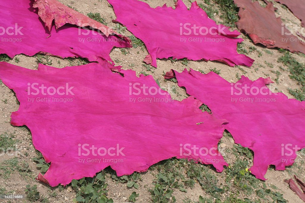 Pink leather dries in ancient city of Fez royalty-free stock photo