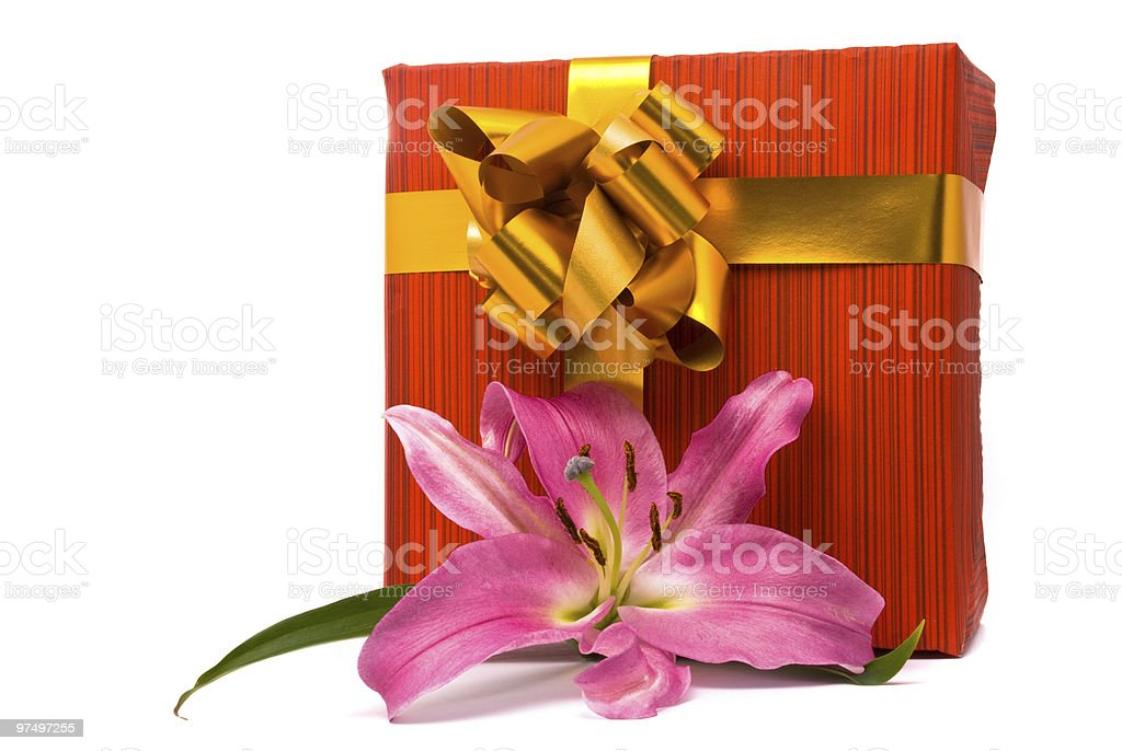 Pink lily and gift box royalty-free stock photo