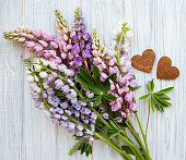 Pink  lupine flowers border and wooden hearts on a old wooden background