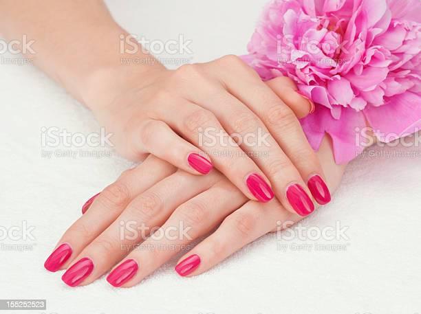 Pink manicure and a flower picture id155252523?b=1&k=6&m=155252523&s=612x612&h=qcvo7djzrwl8dak9afnpgiukyxpwkdtq9mll3innwzi=