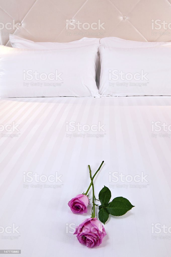 Pink of roses lay on the bed royalty-free stock photo