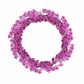 Pink orchid circle XXL