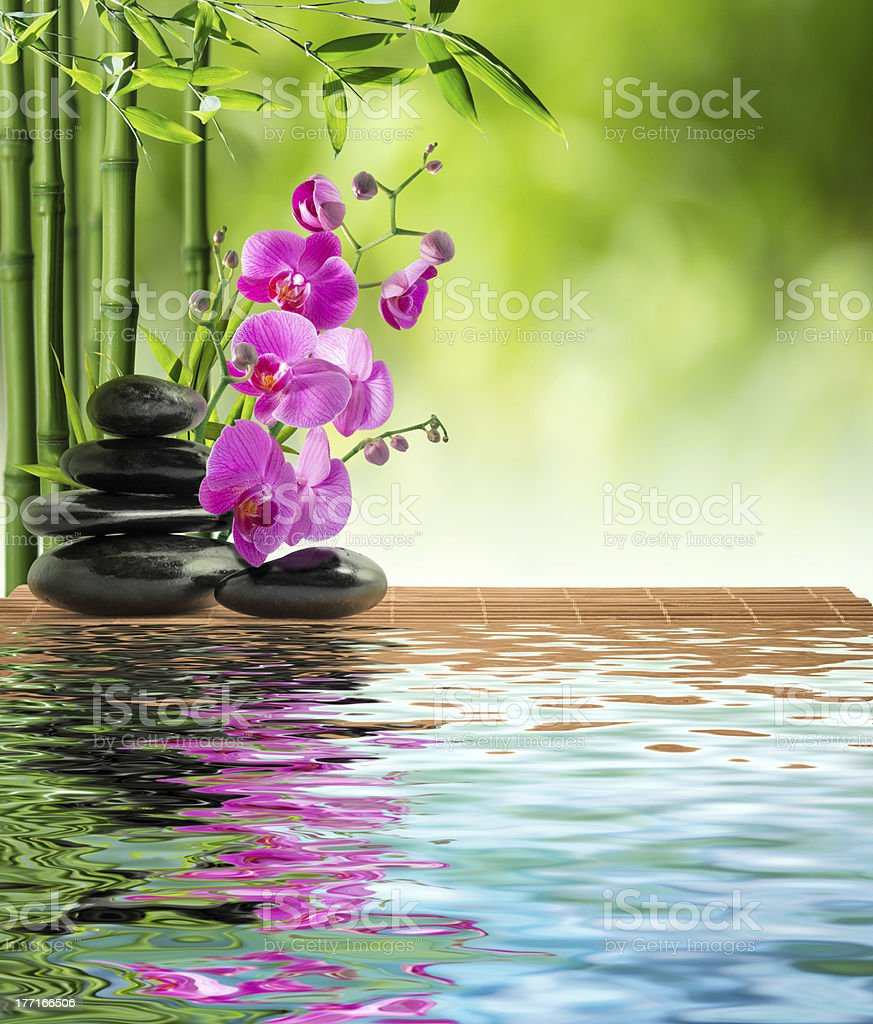 pink orchid, stones, and bamboo - on water stock photo