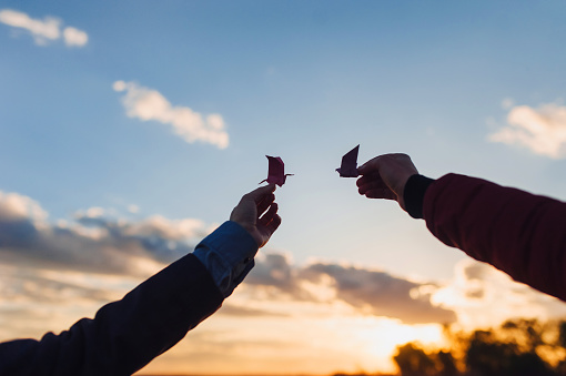 Pink origami bird in woman's hands with beautiful sunset background. Freedom concept.