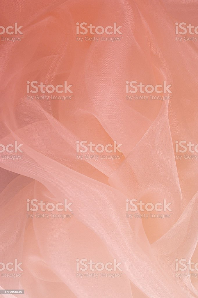 Pink Passion royalty-free stock photo