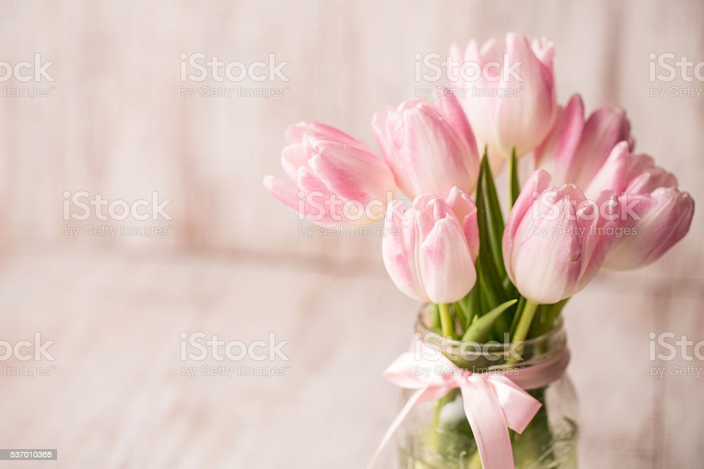 Pink Pastel Tulips in Glass Jar Vase With Bow stock photo