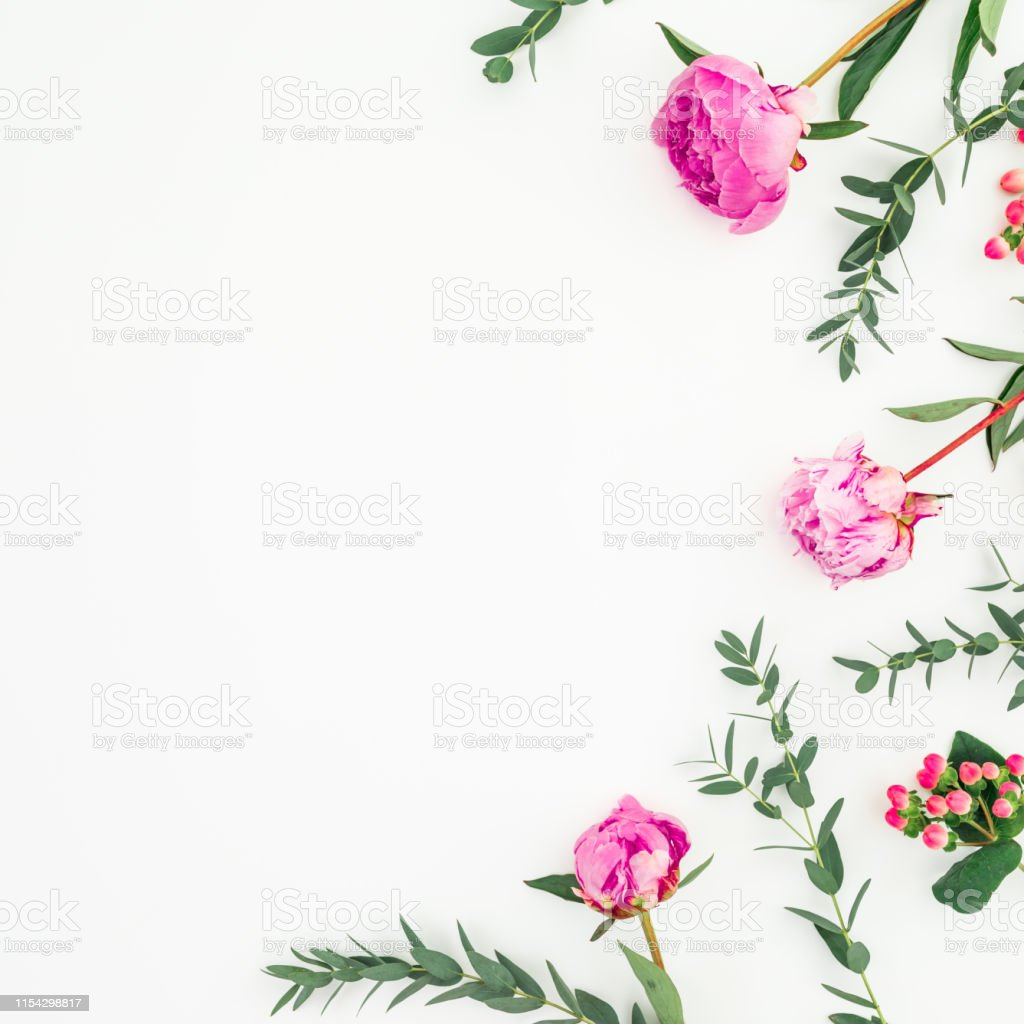 Pink peonies and eucalyptus on white background. Floral frame. Flat...