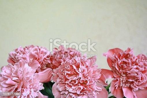 istock Pink peonies bouquet 1028777090