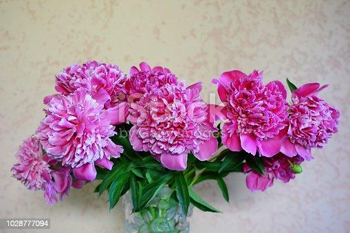istock Pink peonies bouquet 1028777094