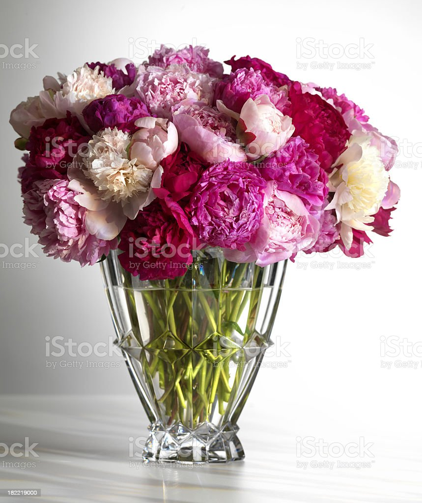Pink Peonies in a vase royalty-free stock photo