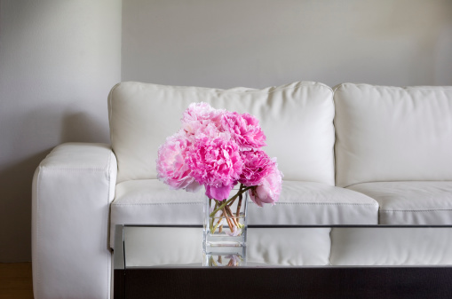 pink peonies in white living room