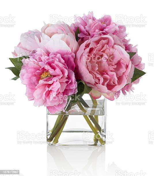 Pink peonies on white background picture id157672862?b=1&k=6&m=157672862&s=612x612&h=srpwu3zoil2tnora69sodlomvqem qjvs6zy5wkvn04=
