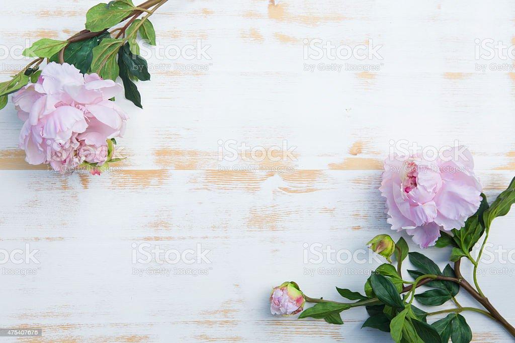 Rosa Pfingstrosen auf rustikalen Holz-Hintergrund Weiß – Foto