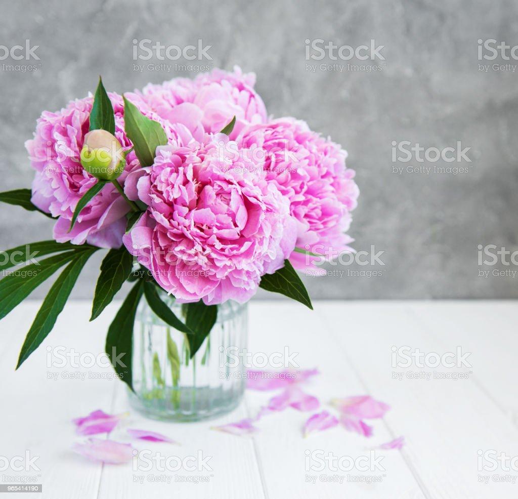 Pink peony flowers royalty-free stock photo