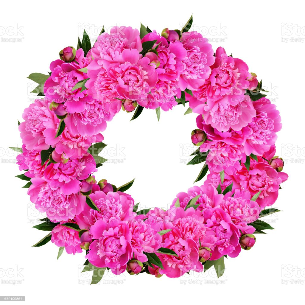 Pink Peony Flowers Wreath Stock Photo More Pictures Of Arrangement