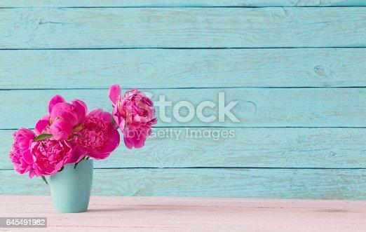 istock pink peony on blue background 645491982