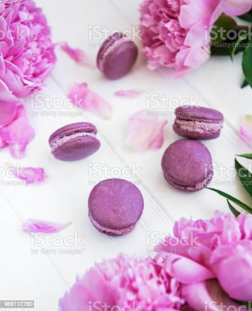 Pink Peony With Macarons - Fotografias de stock e mais imagens de Amontoar