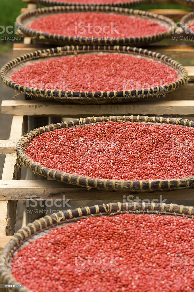 Pink pepper stock photo