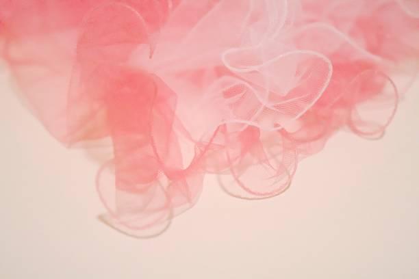 rose - fond couleur uni photos et images de collection