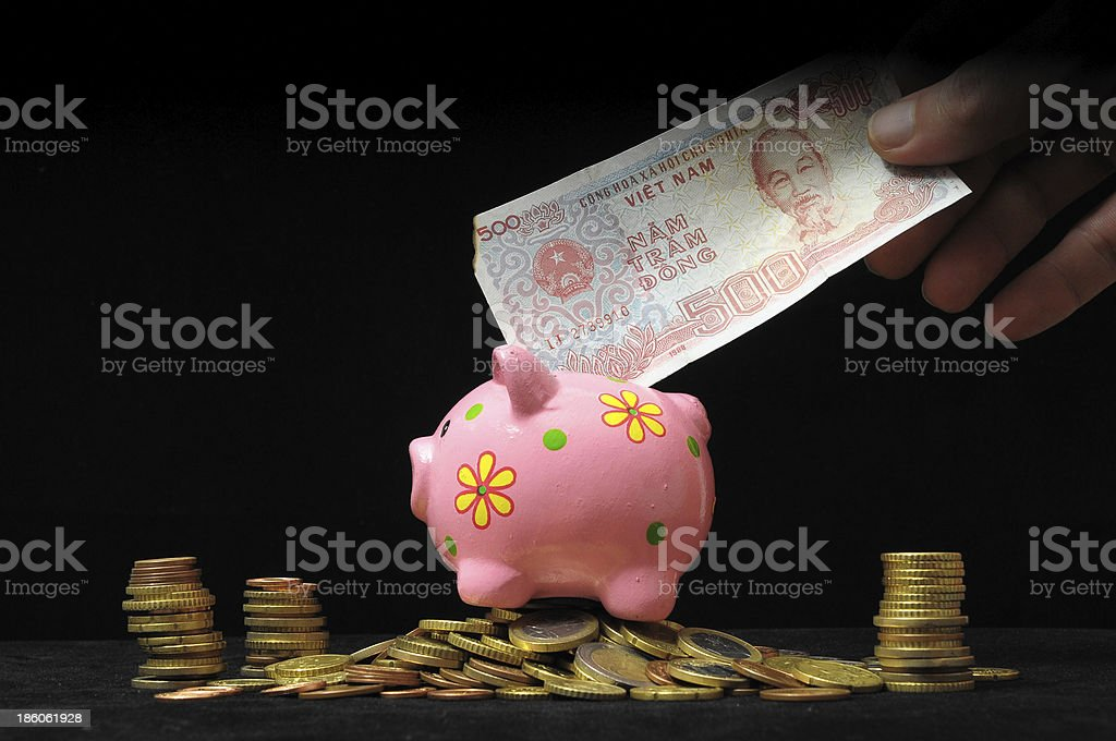 Pink Pig Piggy Bank royalty-free stock photo
