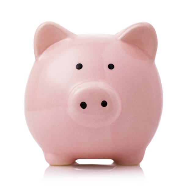 pink piggy bank isolated on white background - piggy bank stock photos and pictures