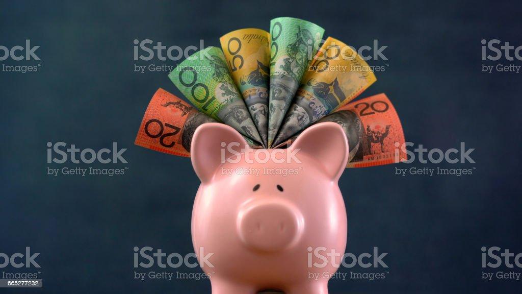 Pink Piggy bank money concept on dark blue background stock photo