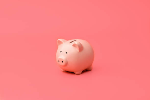 pink piggy bank stands in the center on a pink background. horizontal photography - deficient stock pictures, royalty-free photos & images
