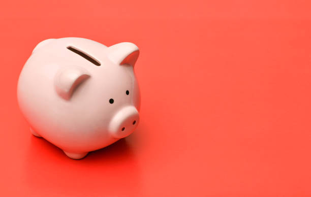 pink piggy bank stands on the left on a red background with a shadow. on the right there is a place in copyspace - piggy bank stock photos and pictures