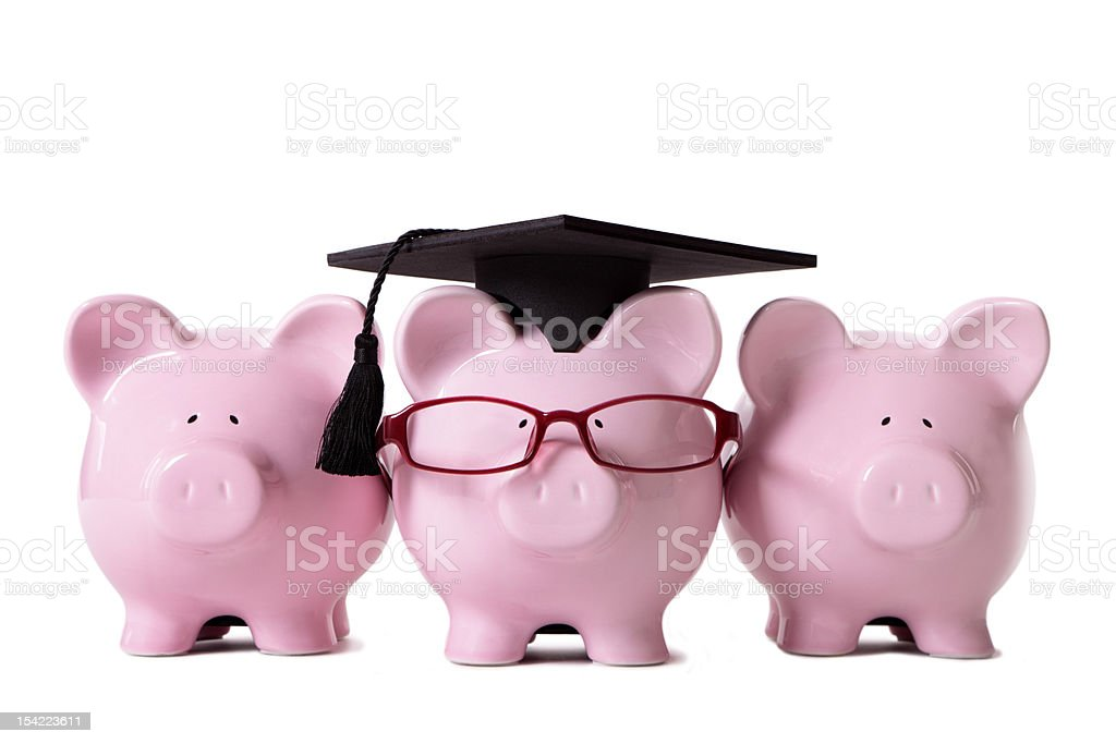 Pink Piggy Banks royalty-free stock photo