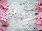 istock pink pink flower border on white wooden 505160472