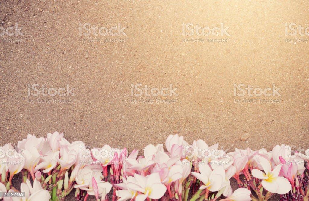 Pink Plumeria on the sand beach background,Summer concept.