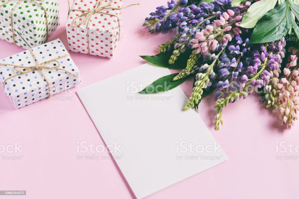 Pink, purple lupine flowers, gifts and empty paper sheet on pink...