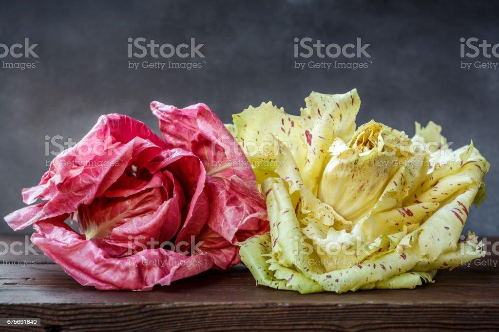 Pink radicchio stock photo