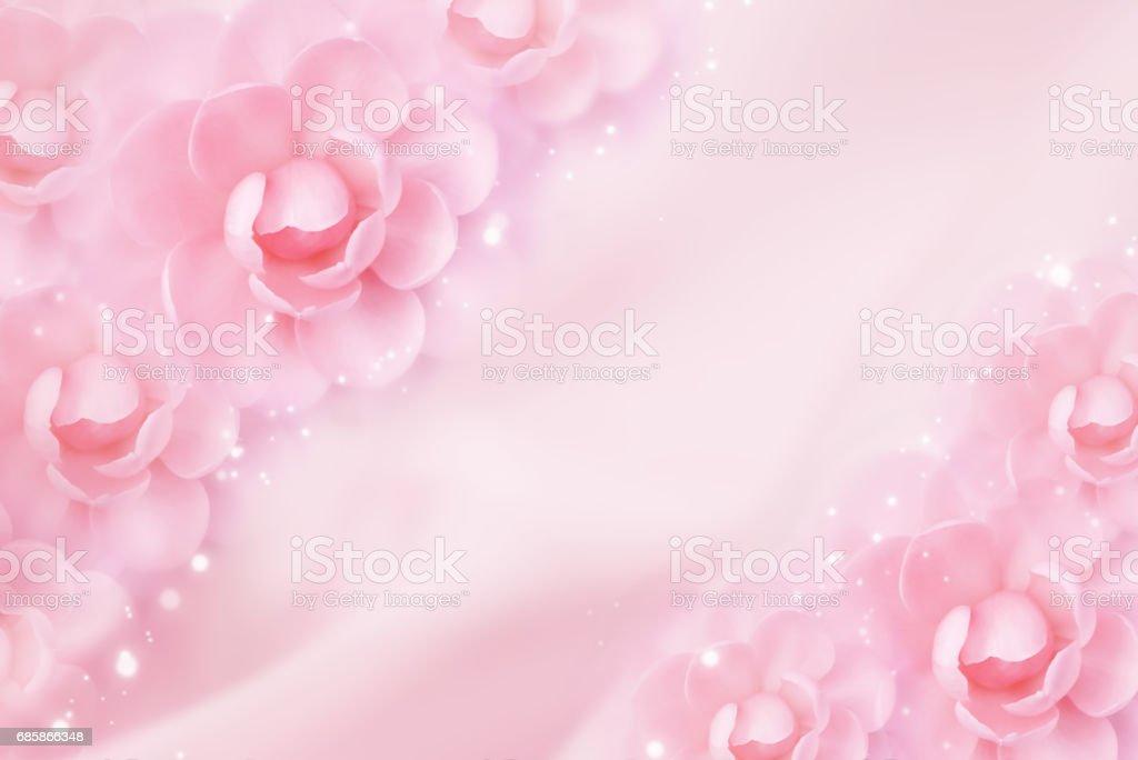 pink romance flower border in soft tone background – Foto