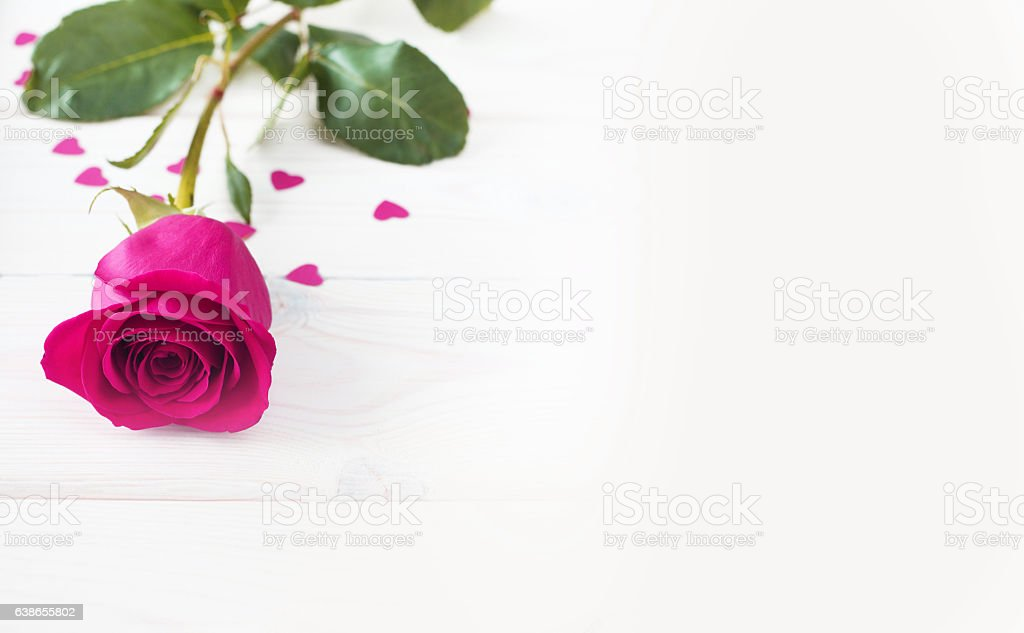 Pink rose and small hearts stock photo