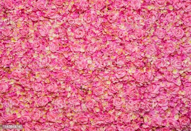 Pink rose background picture id1142649742?b=1&k=6&m=1142649742&s=612x612&h=qowvv4sqn 2law4mfi3f9f5uwwhpge3 oo5b7fjqnby=
