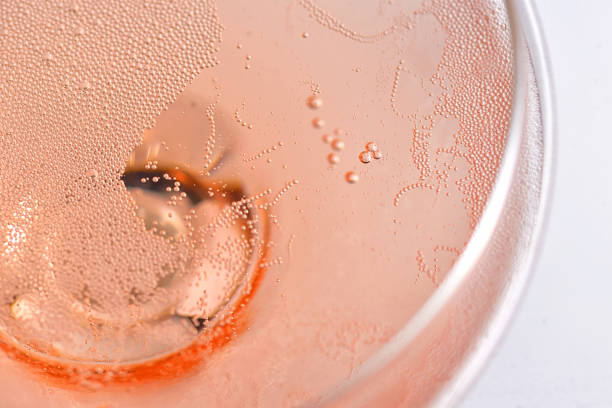 Pink Rose Champagne Glass With Bubbles stock photo
