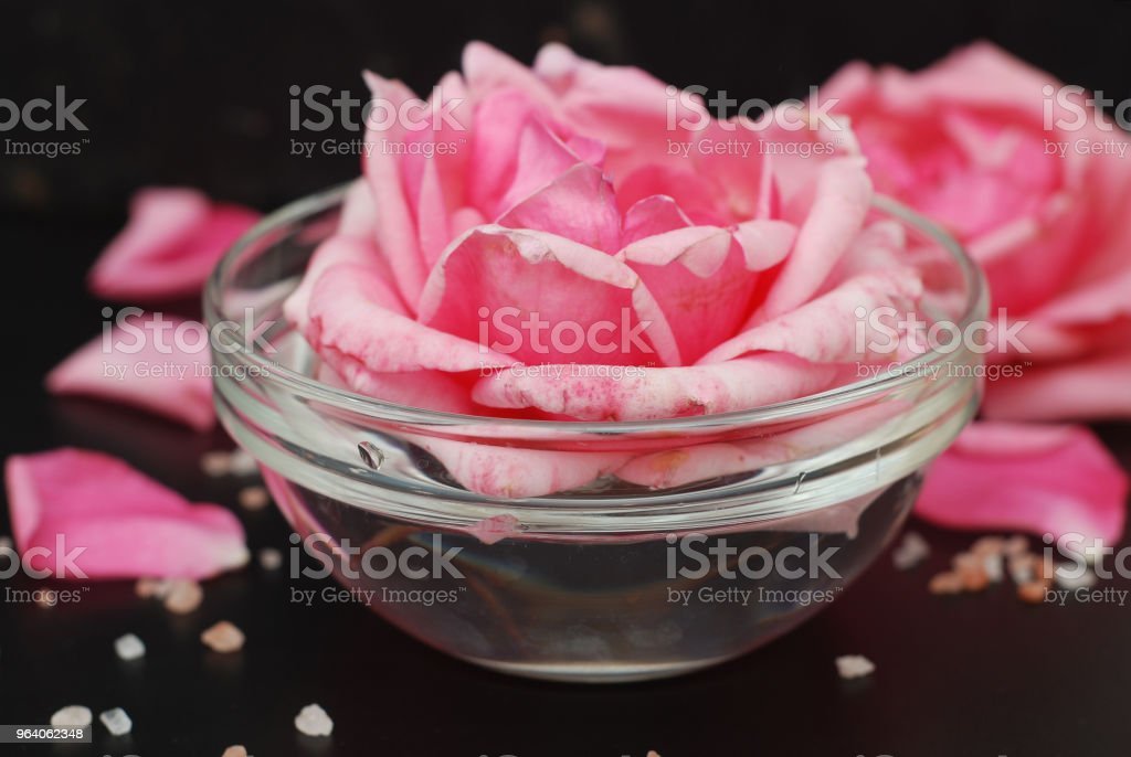 Pink Rose Flower in Soft Color, selective focus, Spa and Beauty Concept Black Background Copy space. Pink flower and Relax Salt. - Royalty-free Abstract Stock Photo
