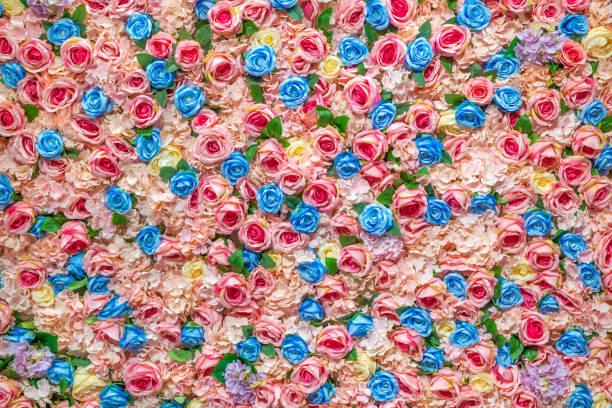 rosa rose Blume Wand mit für Design Hintergrundtextur – Foto