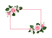 istock Pink rose flowers and green leaves in a floral corner arrangement and a frame 1019956438