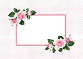 istock Pink rose flowers and green leaves in a floral corner arrangement and a frame 1025575124