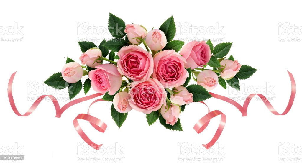 Pink rose flowers and ribbons arangement stock photo