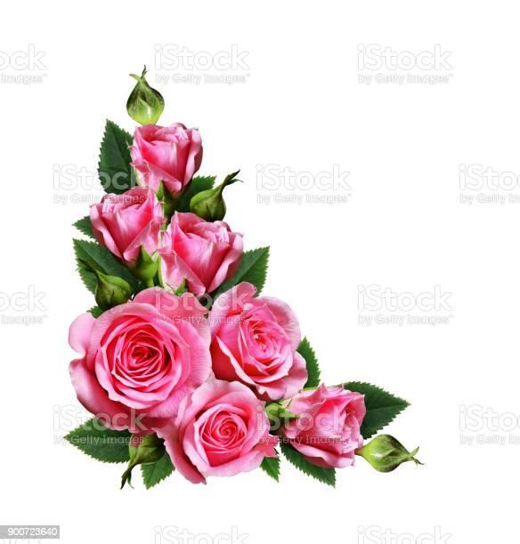 Pink rose flowers corner arrangement picture id900723640?b=1&k=6&m=900723640&s=612x612&h=e tuyge679jifz97gjj10a9n9afu91 kxfcpedbib9u=