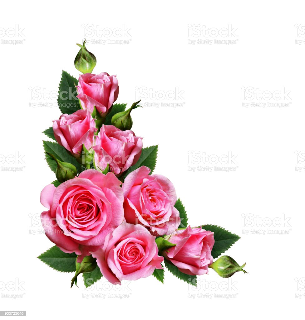 Pink rose flowers corner arrangement stock photo