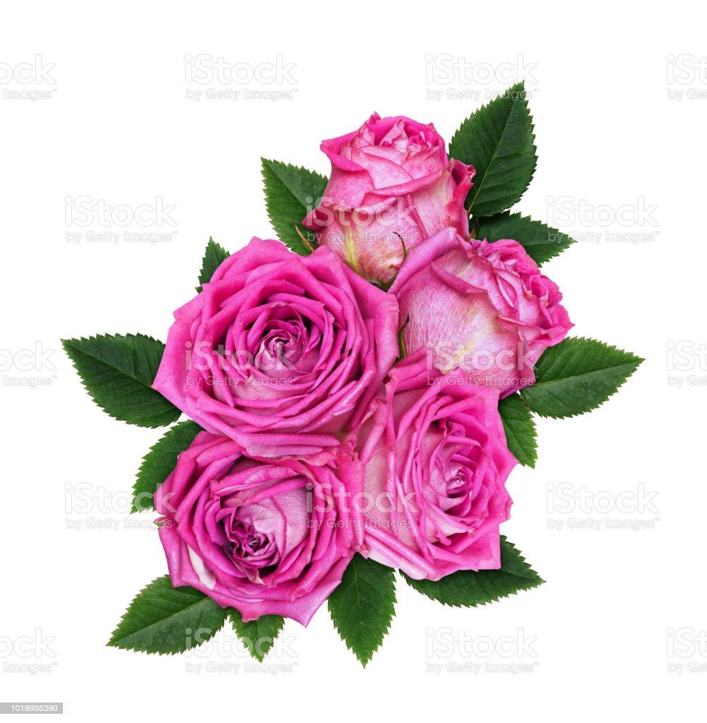 Rosa Rosas En Un Arreglo Floral Foto De Stock Y Más Banco De