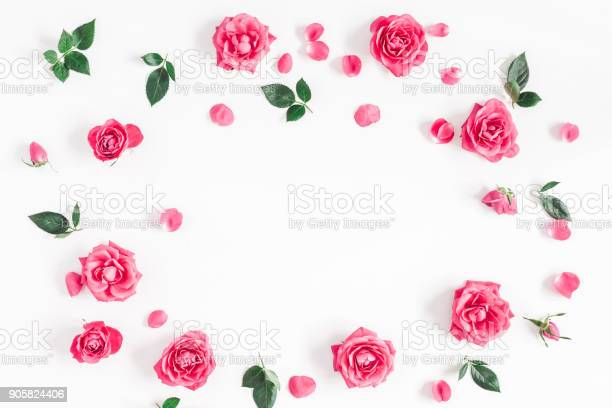 Pink rose flowers on white background flat lay top view picture id905824406?b=1&k=6&m=905824406&s=612x612&h=tpinhd  lsoj7ysldnt2uyo284bupv50me6v03caomy=