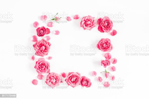 Pink rose flowers on white background flat lay top view picture id917173448?b=1&k=6&m=917173448&s=612x612&h=ou1iwkowiigqwrl4psc0eixi rp0fjgmfpqbhvvhyke=