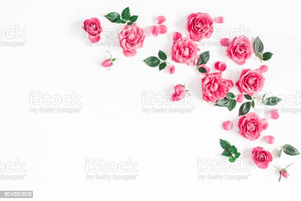 Pink rose flowers on white background flat lay top view picture id924352628?b=1&k=6&m=924352628&s=612x612&h=goglzw4nsvp0kosyffppp6bxmr 3cduiwv56tl9vdbq=