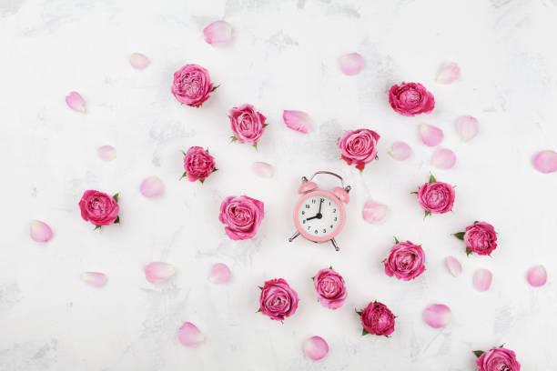 rosa rosen-blumen, blüten und wecker auf weißen schreibtisch. flach zu legen. wachen sie auf, konzept. - blumenuhr stock-fotos und bilder